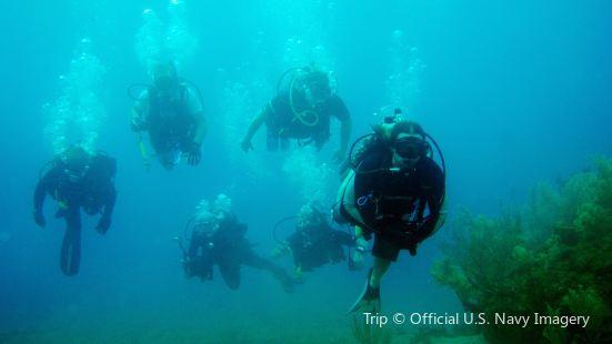 Taino Divers