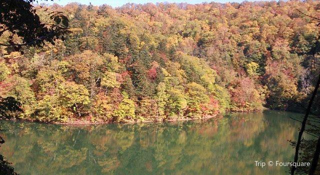半月湖畔自然公園2