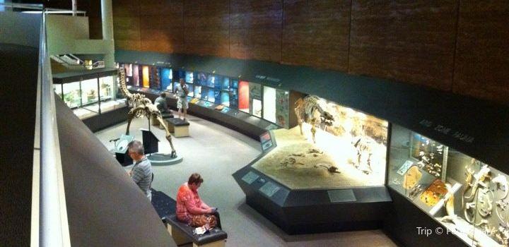 Museum of Central Australia1
