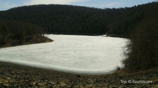 Tionesta Lake and Dam
