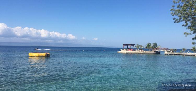Marina Blue Haiti2