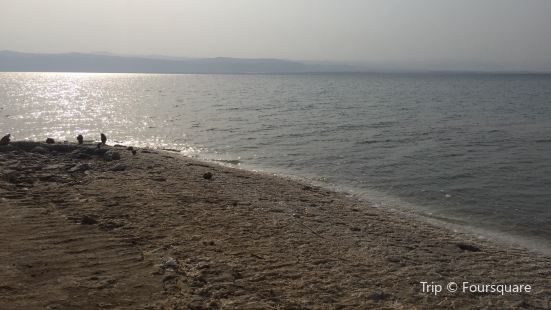 Amman Tourist Beach