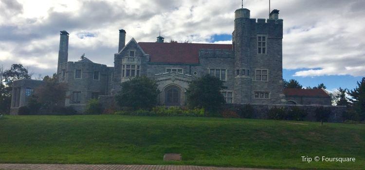 Glamorgan Castle2