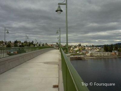 Manette Bridge