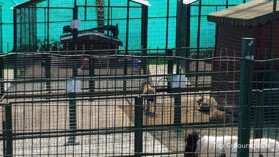 Giresun Belediyesi Hayvanat Bahcesi