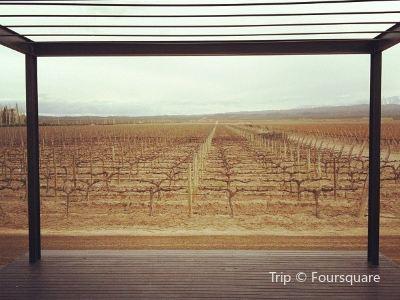Pulenta Estate Winery