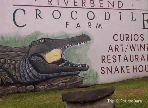 Riverbend Crocodile Farm