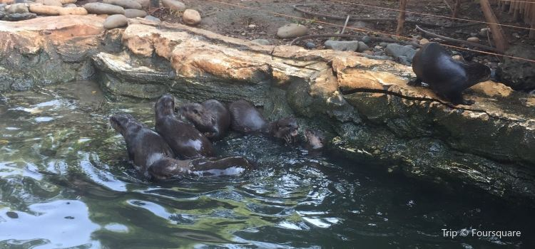 Limassol Zoo3