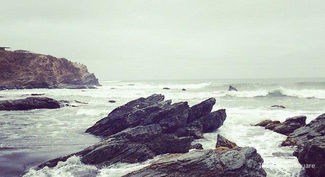 Punta De Lobos3