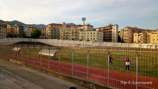 Stadio Donato Vestuti