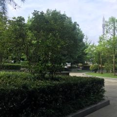 江濱公園用戶圖片