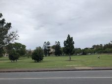 昆士兰大学-布里斯班-林荫大道水至清