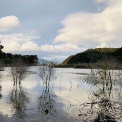 Waimangu Volcanic Valley User Photo