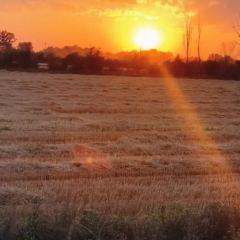 江布拉克草原用戶圖片