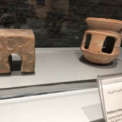 Petra Museum用戶圖片