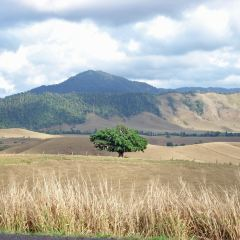 Atherton Tablelands User Photo