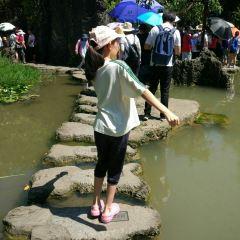 Shu Sheng Bu User Photo