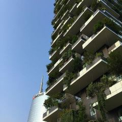 Bosco Verticale User Photo