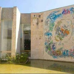 夏加爾美術館用戶圖片