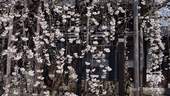 Ryukokuji Temple