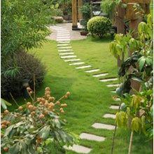 Furr Lawn & Landscape
