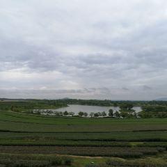 Boon Rawd Farm (Singha Park) User Photo