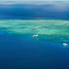 大堡礁直升飛機用戶圖片