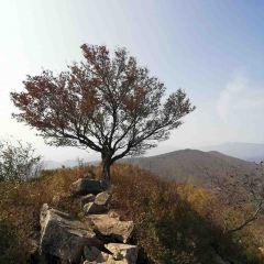 바이차오와 국립삼림공원 여행 사진