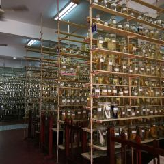 National Oceanographic Museum of Vietnam - Nha Trang User Photo