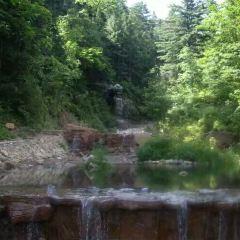 金頂山國家森林公園用戶圖片