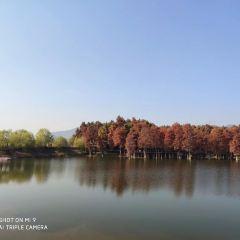 雲中湖用戶圖片