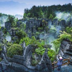 石林用戶圖片