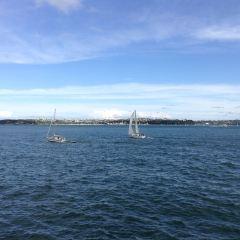 Devonport User Photo