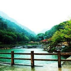 平利桃花溪景區用戶圖片