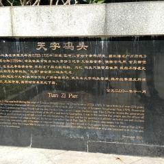 珠江日遊天字碼頭用戶圖片
