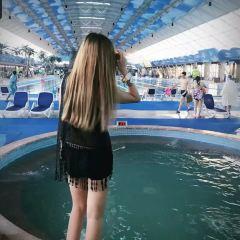 香洲度假區歡樂水王國用戶圖片