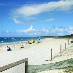 Medilla Beach用戶圖片