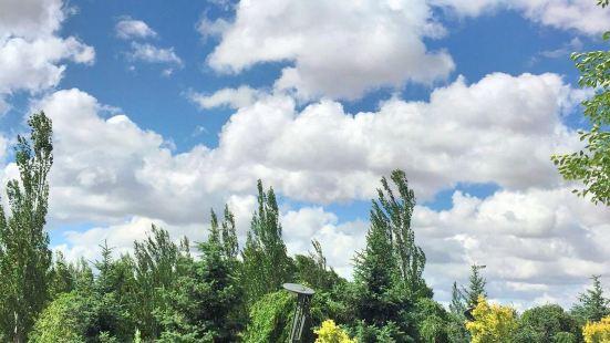 呼和浩特市植物園