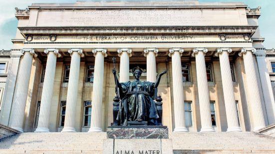 컬럼비아 대학교