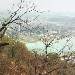 青山公園用戶圖片