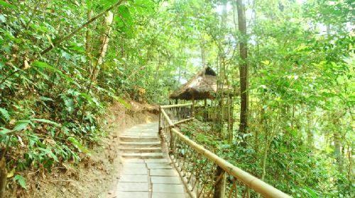 Xishuangbanna Rainforest Valley