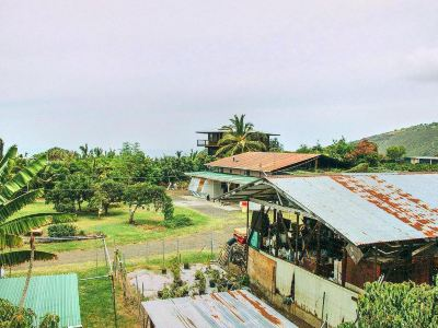 Greenwell Coffee Farm