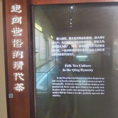 중국차박물관 여행 사진
