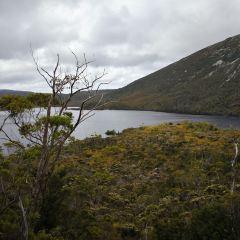 鸽子湖环湖步道用戶圖片