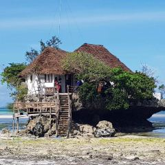 Pemba Island用戶圖片