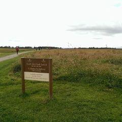 Culloden Battlefield 여행 사진