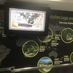 Skyline Luge Sentosa User Photo