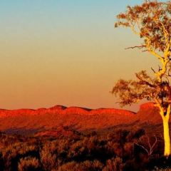 Macdonnell Ranges User Photo