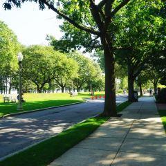 Boston University User Photo