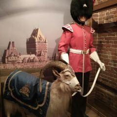 要塞博物館用戶圖片